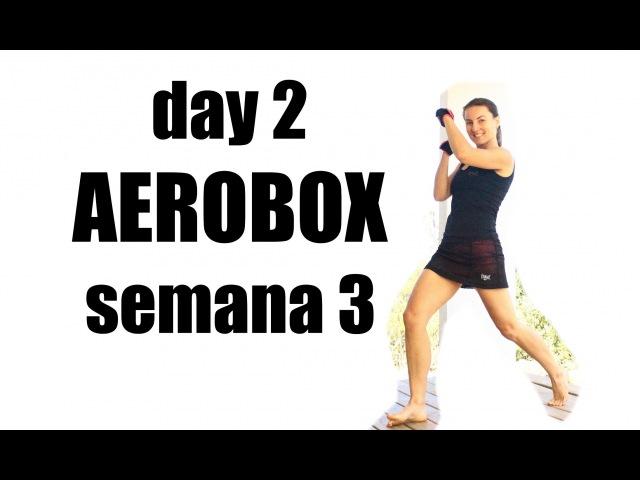Aerobox en casa - Día 11 cardiomes
