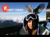 Приколы и фейлы от Funny video! № 13 ПРИКОЛЫ 18+