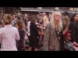 Florence Foster Jenkins World Premiere Red Carpet - Meryl Streep, Hugh Grant, Rebecca Ferguson