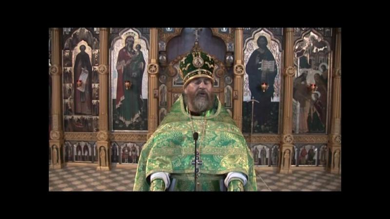 Архимандрит Амвросий Юрасов Вербное воскресенье Проповедь 8 апреля 2012 г
