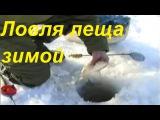 Ловля леща зимой-прикормка,снасти,поиск рыбы видео