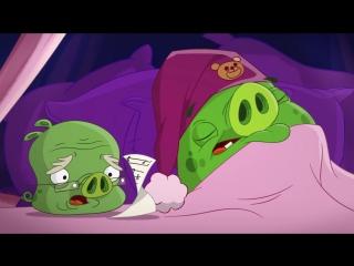 ЗЛЫЕ ПТИЧКИ - Angry Birds мультфильм - 2 сезон - 23 (Все серии в альбоме группы)
