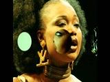 Oumou Sangare - Wayeina