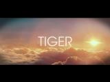 R3HAB vs. SKYTECH, FAFAQ - Tiger