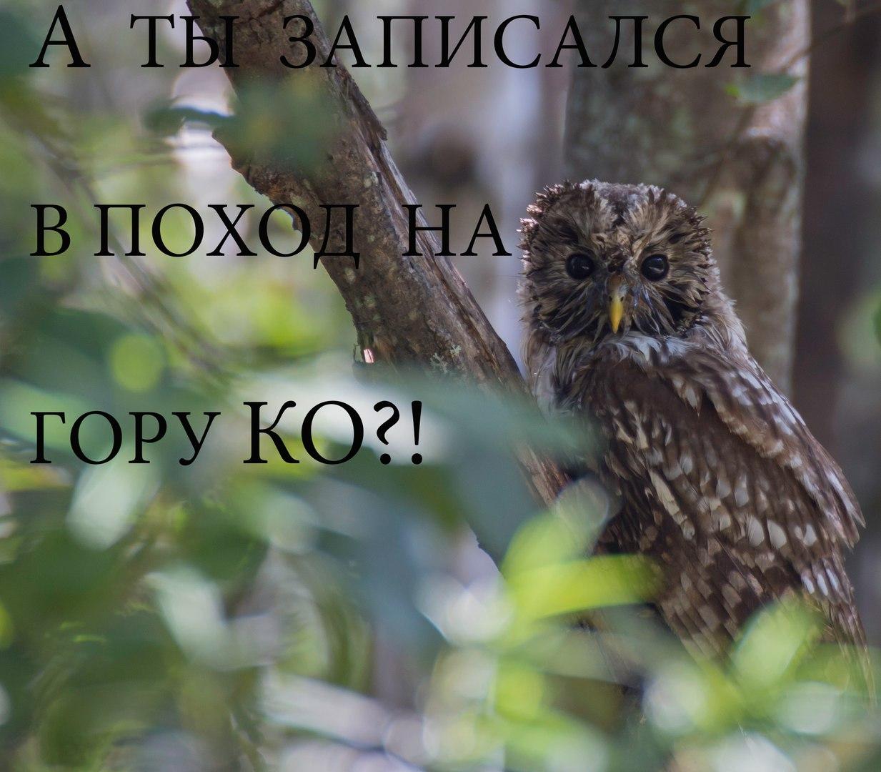 Афиша Хабаровск Выезд на гору Ко и окрестности