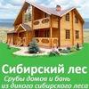 Срубы на заказ домов и бань   Сибирский лес