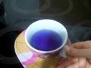Дегустируем синий чай из Тайланда