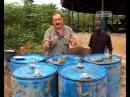 Далеко и ещё дальше с Михаилом Кожуховым. Африка. Гана