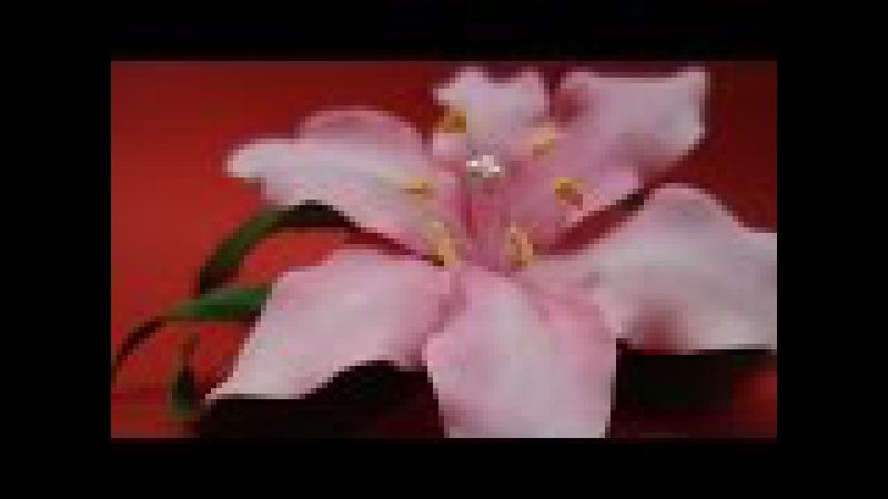 Лилия (цветы) из фоамирана Легко! Мастер класс Часть 1 Lily foam easy! Master Class Part 1