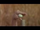 Змея в тени орла/Se ying diu sau (1978) Американский трейлер