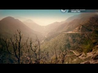 BBC | Чудеса жизни | Серия №2 - Wonders of Life (2013)