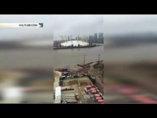 Неизвестное существо объявилось в Темзе - видео очевидцев