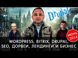 Wordpress, Bitrix, Drupal, Seo, Дорвеи, Лендинги и бизнес - Июнь 2016! 4