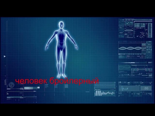 Выход из Матрицы 10 серия Человек бройлерный