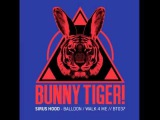 Sirus Hood - Balloon (Original Mix) - BT037