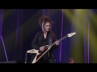 Acid Black Cherry-Adult Black Cat(live-video)