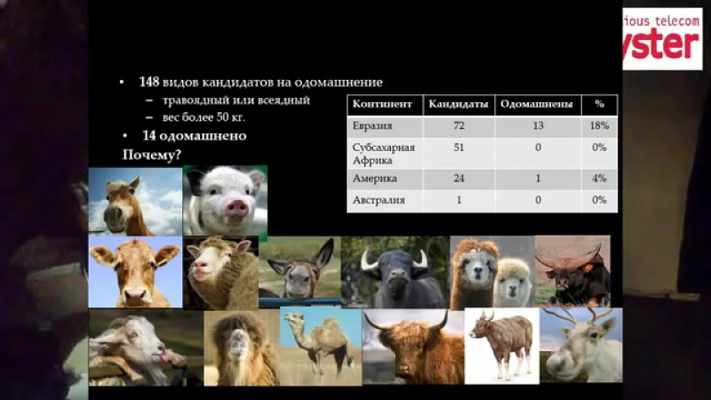 11. Андрей Серяков - Ружья, микробы и сталь