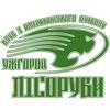 Ужгородські Лісоруби ( Uzhgorod Lumberjacks)