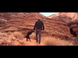 Marc Lavoine - Je descends du singe (clip officiel)