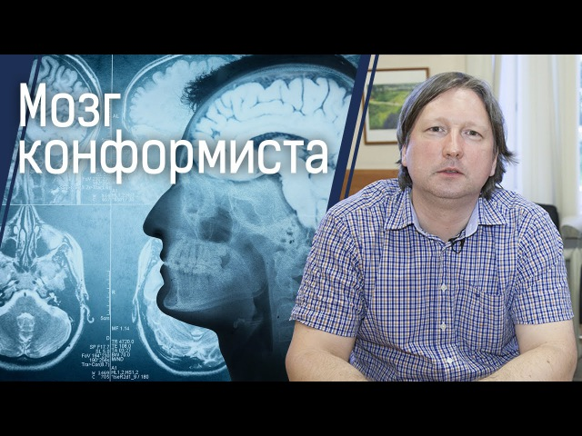 Мозг конформиста: почему мнение большинства очень важно для нас vjpu rjyajhvbcnf: gjxtve vytybt ,jkmibycndf jxtym df;yj lkz yfc