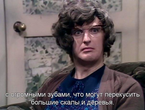 Заяц Бо | Санкт-Петербург