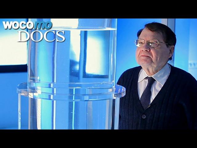 Память воды. Научно-документальный фильм лауреата Нобелевской премии Люка Монтанье. ENG