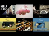 Видео для инстаграм от Hella Good
