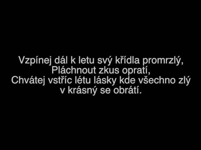 Summer All Stars Léto lásky ft Slza Text