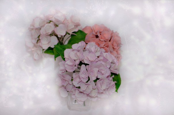 Немного моего цветочного рукоделия из фоамирана.