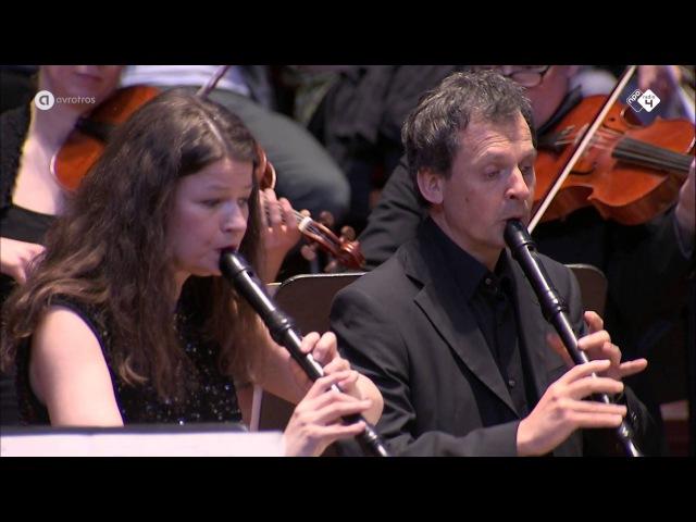 J.S. Bach: Brandenburgs Concert nr. 4 - Hofkapelle München - Live concert HD