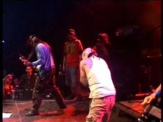 Gut - Jenna Haze (You're A Pro) Live Obscene Extreme 2006