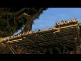 Мадагаскар 2Madagascar Escape 2 Africa (2008) Трейлер (дублированный)