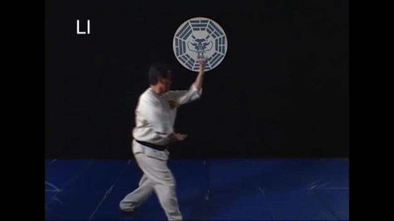 Wushu_ Bagua Chi Kung - Secrets of the Dragon (Jason Tsou) 01