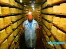 Вкус сыра Горгонзола и Толеджио