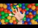 ПЕСЕНКА ПРО ПАЛЬЧИКИ на русском, СЕМЬЯ ПАЛЬЧИКОВ УЧИМ ЦВЕТА УЧИМ ПАЛЬЦЫ Finger Family Song Russian