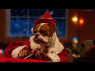 Вот как Санта и его помощники готовятся к Рождеству