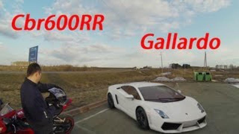 Cbr600rr 08 Wheelies and lamborgini gallardo GO PRO HD » Freewka.com - Смотреть онлайн в хорощем качестве