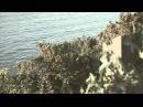 Chris de Burgh - My Heart's Surrender (Official)