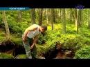 На Прикарпатті лісівники знайшли підземне сховище