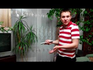 дмитриченко 2