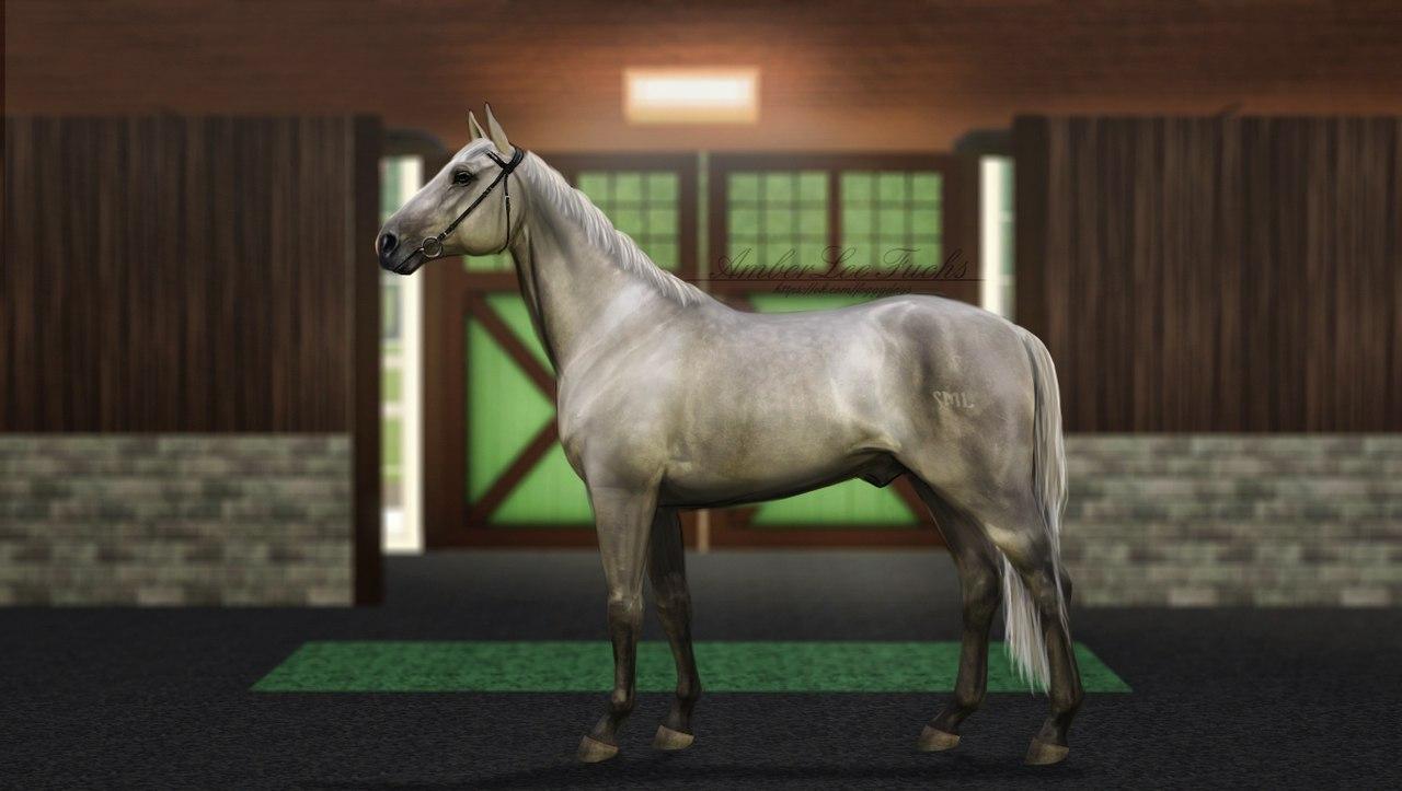 Регистрация лошадей в RHF 2 ZEii0aUPMq4