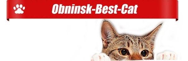 obninsk-cat.ru/