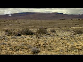 В дебрях Латинской Америки (2012) Патагония.Край Земли