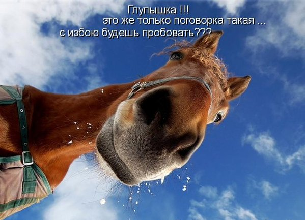 http://cs631626.vk.me/v631626672/10580/7z9W1PjBKJ0.jpg