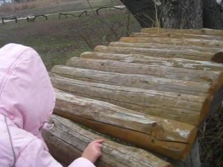 Троллей в Новоселице