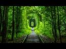 1 Тунель кохання веломаршрут. Tunnel of love cycling trip
