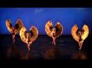 Momix Bothanica HD 2010 Naples Teatro Bellini 1