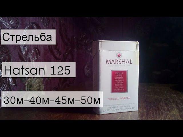 Точность Hatsan 125 TH