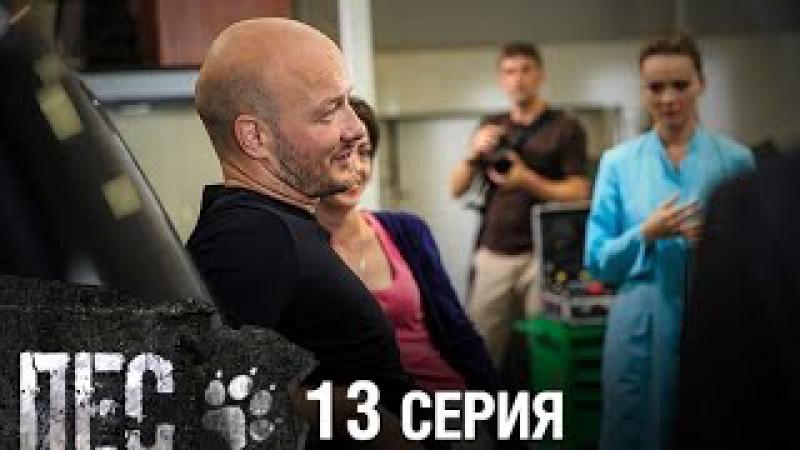 Сериал Пес - 13 серия