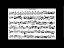 Bach, J.S. violin concerto in E major BWV 1042